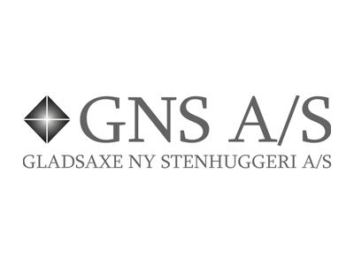 05_GNS